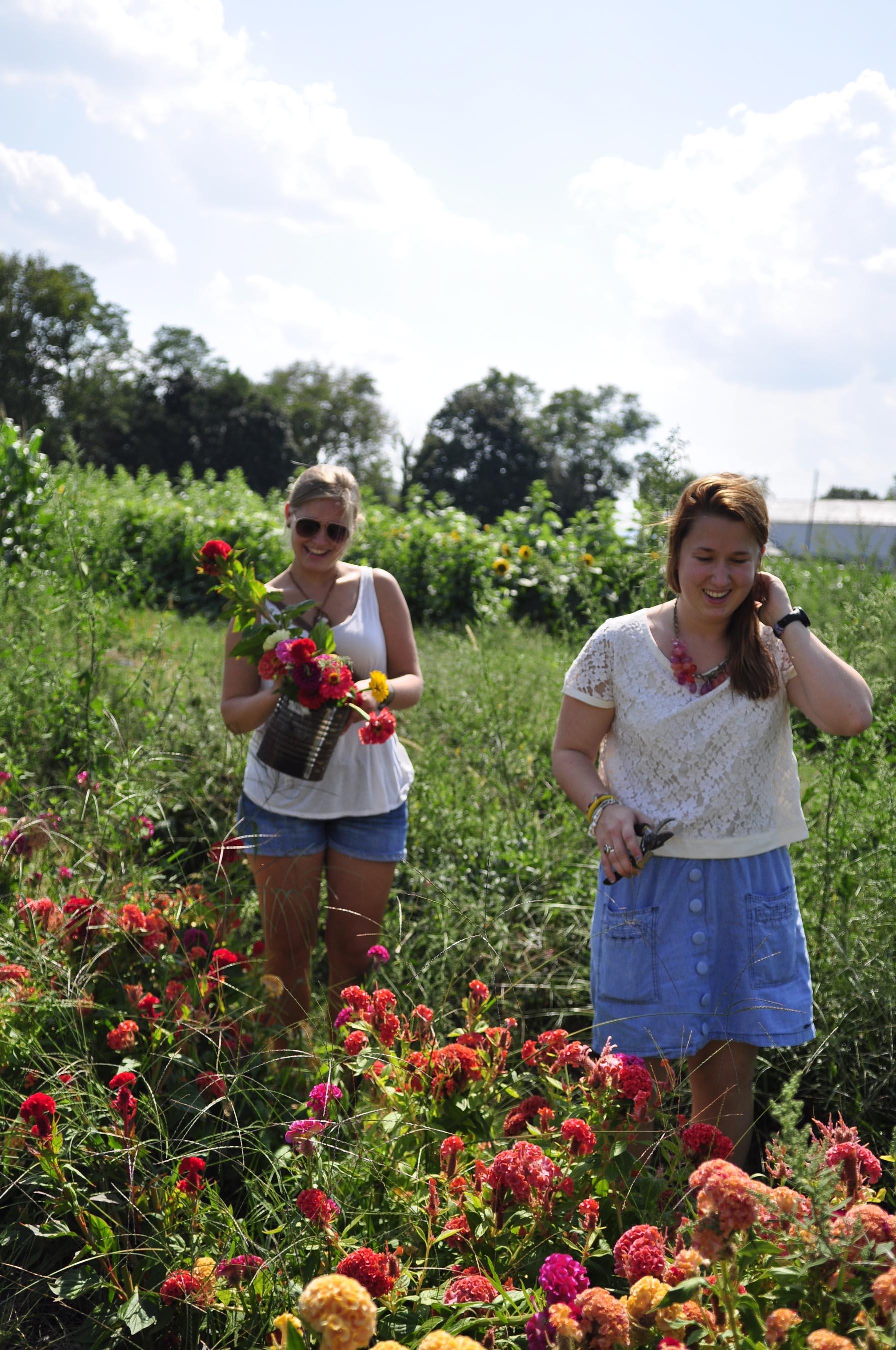 Messiah seniors Lena Karlson and Alina Chapman hand-picking flowers at Paulus Farm Market.